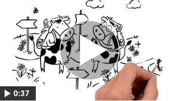Les 2 Vaches – vidéo dessinée animation jeu
