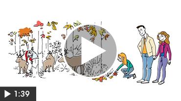 exemple-video-dessinée-presentation-programme-immobilier-saranea-nexity-videostorytelling