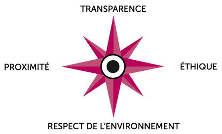 rapport-activite-en-video-rose-vent-videostorytelling