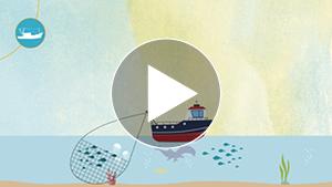 communiquer-storytelling-video-environnement-observatoire-regional-biodiversite-neologis-videostorytelling