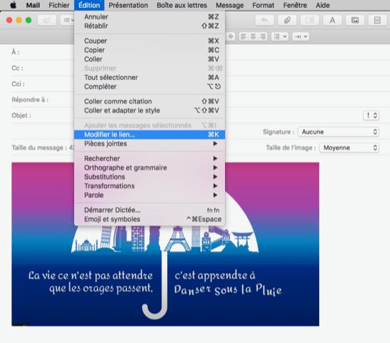 modifier-lien-mac-carte-voeux-digitale-dans-message-mail-videostorytelling